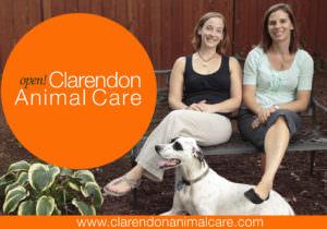 New Vet Clinic For Pet-Loving Clarendon Community