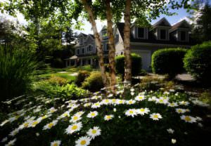 Converting Your Restored Home into a Smart Home