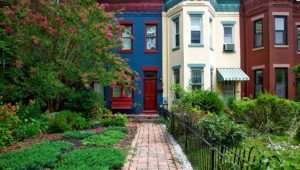 Where to Live in DC: A 2020 Guide