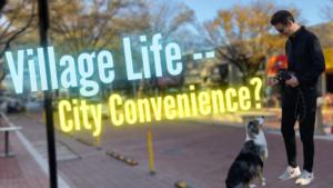 Living In Shirlington Arlington, VA   Best Homes, Condos, Fun, and Dining   Moving to Arlington 2021
